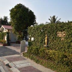 Гостевой Дом Mangoes фото 11