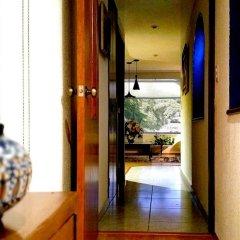 Отель Private Sanctuary Del Valle Мексика, Мехико - отзывы, цены и фото номеров - забронировать отель Private Sanctuary Del Valle онлайн комната для гостей фото 2