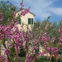 Отель I Ciliegi Италия, Озимо - отзывы, цены и фото номеров - забронировать отель I Ciliegi онлайн фото 19