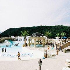 Отель Phoenix Pyeongchang Hotel Южная Корея, Пхёнчан - отзывы, цены и фото номеров - забронировать отель Phoenix Pyeongchang Hotel онлайн пляж фото 2