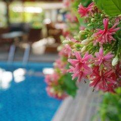 Отель Rock Villa бассейн фото 3