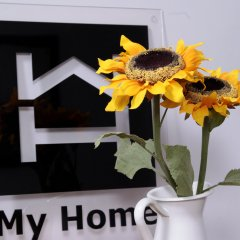 My Home Garden Турция, Стамбул - отзывы, цены и фото номеров - забронировать отель My Home Garden онлайн в номере