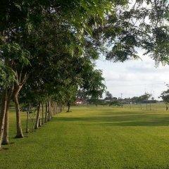 Отель Coconut Grove Beach Resort Гана, Шама - отзывы, цены и фото номеров - забронировать отель Coconut Grove Beach Resort онлайн фото 3