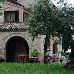 Отель B&B La Casa tra gli Ulivi Чивитанова-Марке фото 2