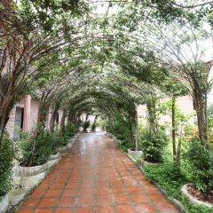 Отель Countryside Garden Resort & Bar фото 13