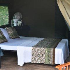 Отель Mahoora Tented Safari Camp - Kumana Шри-Ланка, Яла - отзывы, цены и фото номеров - забронировать отель Mahoora Tented Safari Camp - Kumana онлайн комната для гостей