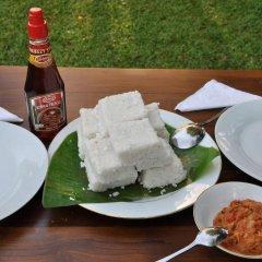Отель Villu Villa Шри-Ланка, Анурадхапура - отзывы, цены и фото номеров - забронировать отель Villu Villa онлайн в номере