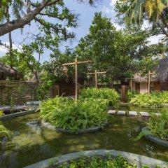 Отель Malahini Kuda Bandos Resort бассейн фото 3