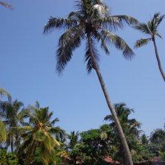 Hotel Star White Negombo фото 3