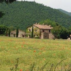 Отель Agriturismo Cardito Италия, Читтадукале - отзывы, цены и фото номеров - забронировать отель Agriturismo Cardito онлайн фото 11