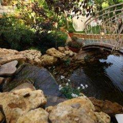 Гостиница Коралл Украина, Николаев - отзывы, цены и фото номеров - забронировать гостиницу Коралл онлайн бассейн