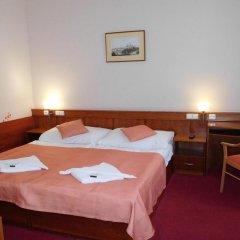 Отель Alton Hotel Чехия, Прага - 12 отзывов об отеле, цены и фото номеров - забронировать отель Alton Hotel онлайн комната для гостей фото 3