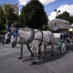 Апартаменты Karla Capka Street городской автобус