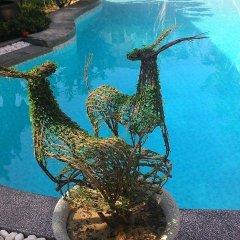 Отель Botanic Garden Villas бассейн фото 2