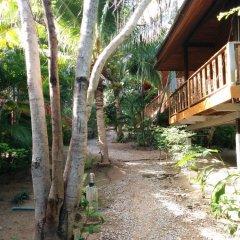 Отель Koh Tao Beachside Resort Таиланд, Остров Тау - отзывы, цены и фото номеров - забронировать отель Koh Tao Beachside Resort онлайн приотельная территория