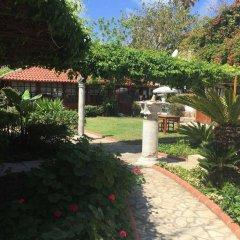 Мини- Lale Park Турция, Сиде - отзывы, цены и фото номеров - забронировать отель Мини-Отель Lale Park онлайн фото 15