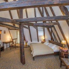 Отель Cerny Slon Чехия, Прага - 2 отзыва об отеле, цены и фото номеров - забронировать отель Cerny Slon онлайн комната для гостей фото 4