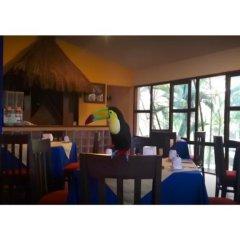 Отель Comfort Inn Palenque Maya Tucán гостиничный бар
