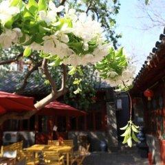 Flowering House Courtyard Hotel фото 6
