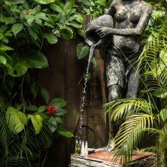 Отель Rohotu Fare Французская Полинезия, Бора-Бора - отзывы, цены и фото номеров - забронировать отель Rohotu Fare онлайн приотельная территория