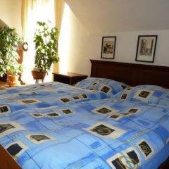 Отель Green Apartment Чехия, Франтишкови-Лазне - отзывы, цены и фото номеров - забронировать отель Green Apartment онлайн комната для гостей фото 4