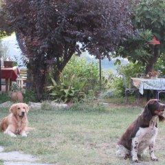 Отель Villa Gaia Сан-Мартино-Сиккомарио с домашними животными