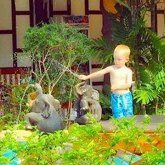 Отель Kantiang Oasis Resort & Spa фото 7
