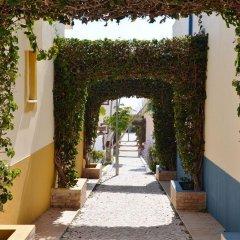 Отель Ponta Grande Sao Rafael Resort Португалия, Албуфейра - отзывы, цены и фото номеров - забронировать отель Ponta Grande Sao Rafael Resort онлайн фото 13