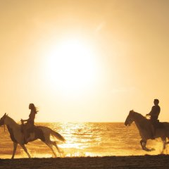 Отель Secrets Royal Beach Punta Cana Доминикана, Пунта Кана - отзывы, цены и фото номеров - забронировать отель Secrets Royal Beach Punta Cana онлайн фитнесс-зал фото 4
