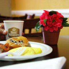 Отель Best Western Center Inn США, Вирджиния-Бич - отзывы, цены и фото номеров - забронировать отель Best Western Center Inn онлайн в номере