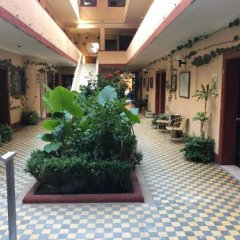 Отель Gallo Rubio Мексика, Гвадалахара - отзывы, цены и фото номеров - забронировать отель Gallo Rubio онлайн фото 9