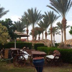 Отель Palma Resort фото 5