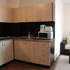 Апартаменты Pirin Palace White Apartments в номере фото 2