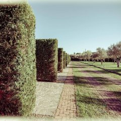 All Ways Garden Hotel & Leisure фото 15