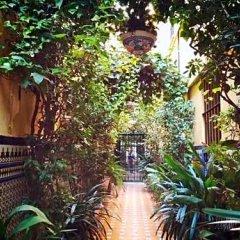 Отель Hostal Atenas фото 7