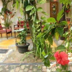 Отель Dionis Villa фото 4