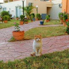 Отель Rethymno Village фото 5