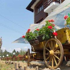 Отель Bistrica Hotel Болгария, Боровец - отзывы, цены и фото номеров - забронировать отель Bistrica Hotel онлайн