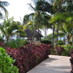 Отель Oasis Cancun Lite фото 5