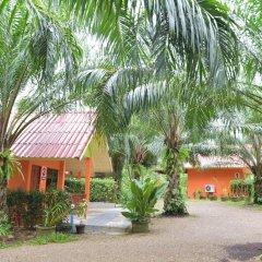 Отель Palm Kaew Resort Krabi фото 2