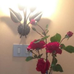 Отель Agriturismo Villa Vetiche Италия, Рокка-Сан-Джованни - отзывы, цены и фото номеров - забронировать отель Agriturismo Villa Vetiche онлайн фото 3