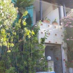 Отель Tassos 2 Греция, Пефкохори - отзывы, цены и фото номеров - забронировать отель Tassos 2 онлайн фото 6