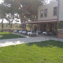 Geyikli Herrara Турция, Тевфикие - отзывы, цены и фото номеров - забронировать отель Geyikli Herrara онлайн фото 9
