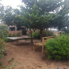 Отель Stumble Inn Eco Lodge Гана, Шама - отзывы, цены и фото номеров - забронировать отель Stumble Inn Eco Lodge онлайн фото 4