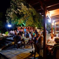 Отель Gelli Apartments Греция, Кос - отзывы, цены и фото номеров - забронировать отель Gelli Apartments онлайн фото 5