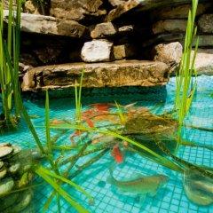 Гостевой Дом Лера Сочи бассейн фото 2