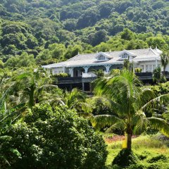 Отель InterContinental Danang Sun Peninsula Resort фото 6