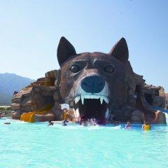 Grand Haber Hotel - All Inclusive бассейн фото 3
