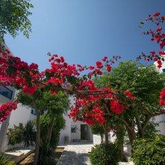 Отель Acrogiali фото 11