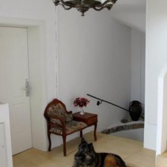 Отель Old Vienna Apartments Австрия, Вена - отзывы, цены и фото номеров - забронировать отель Old Vienna Apartments онлайн фото 7